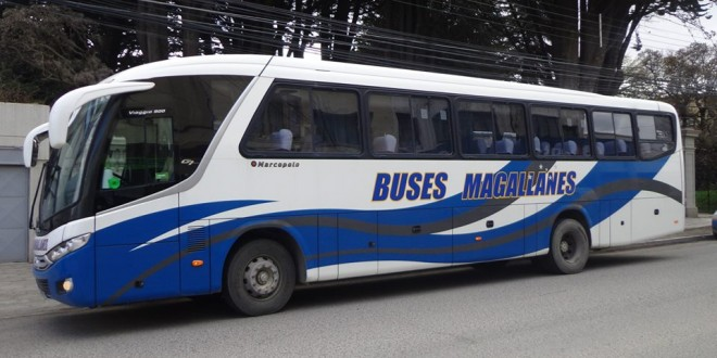 Buses Magallanes